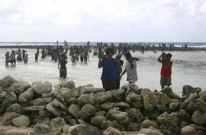 Tikopians carrying rocks